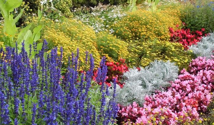 Оформление клумб и цветников во дворе: последние тренды