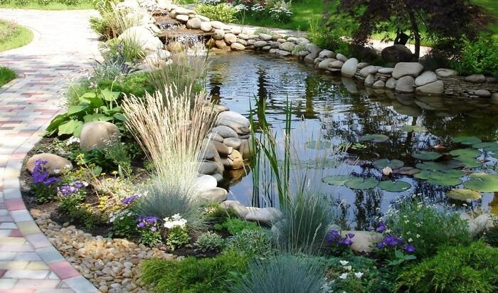 Какие водоемы могут занять место на территории вашего дачного участка?
