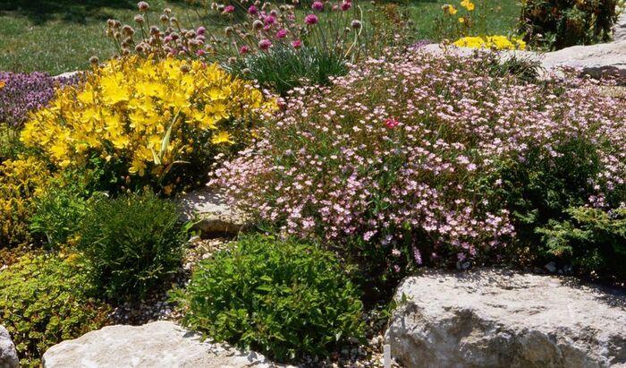 Камни в дизайне сада: какими способами вписать в ландшафт