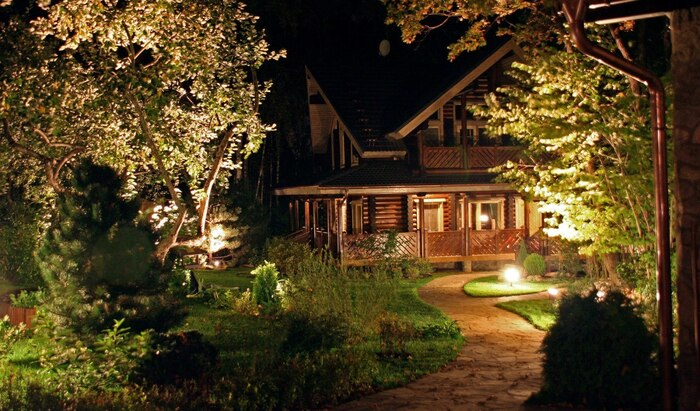 Вечерние цветы: рай для садоводов-сов