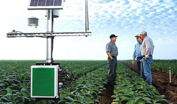 Умные технологии в сельской местности: опыт Америки
